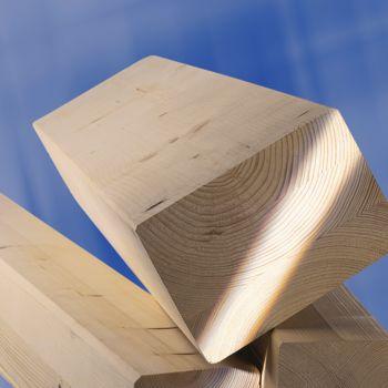 rigle-grinzi-din-lemn-300x300